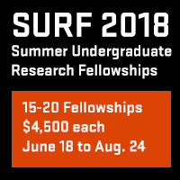 SURF 2018 program ad